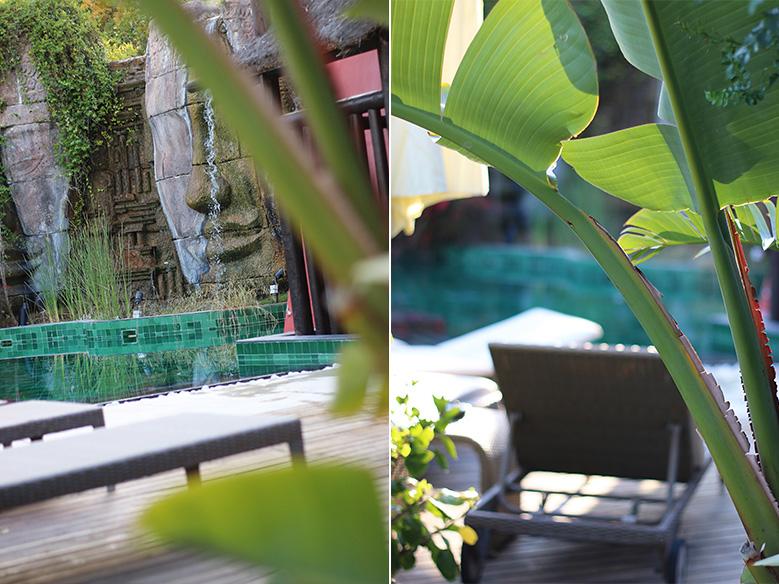 asia-gardens14