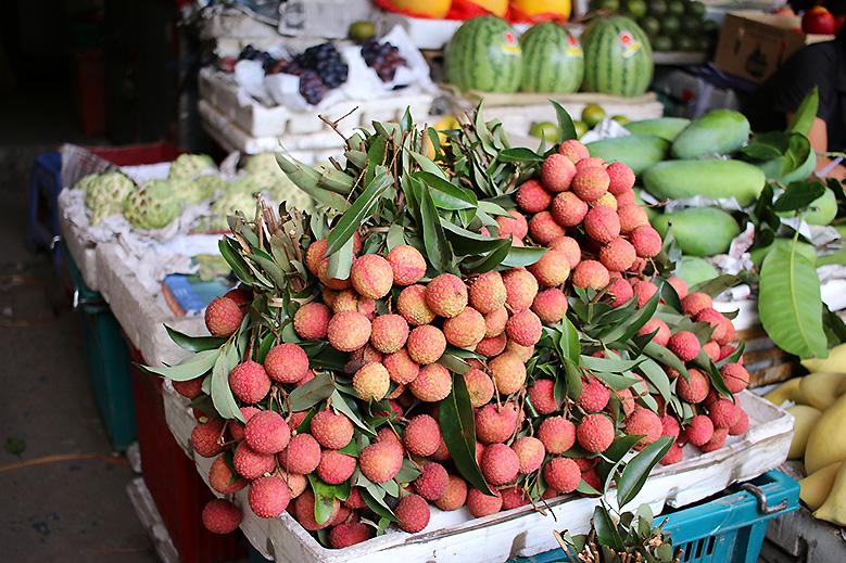 vietnam-comptoir-des-voyages15