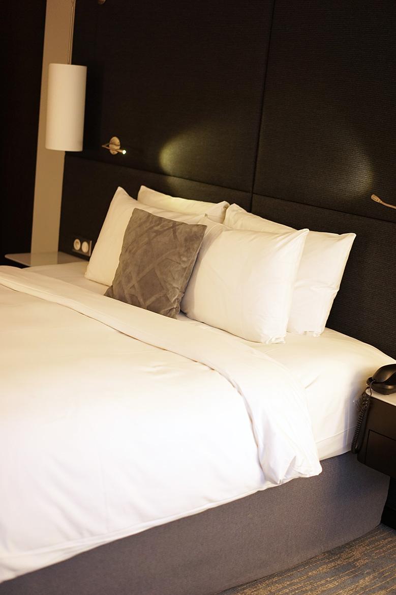 hotel-renaissance-paris3