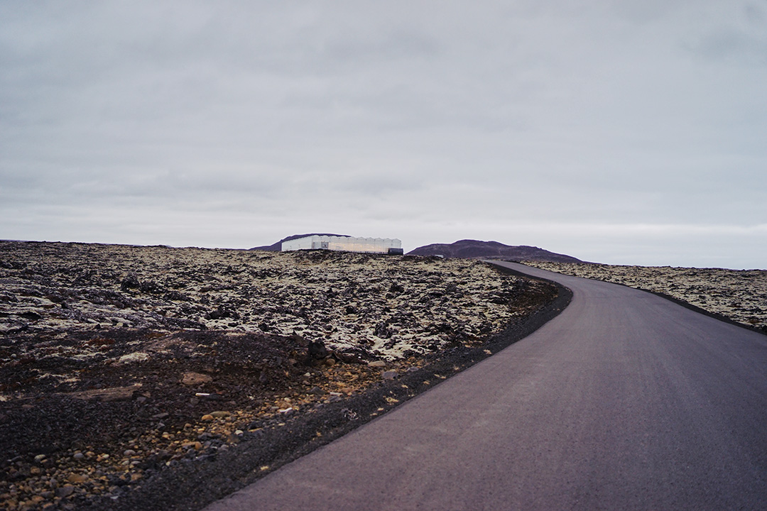 Icelandic treasure : Bioeffect
